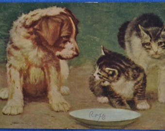Puppy 2 Kitties Kitty Spits Arches Back Postcard Postmarked 1907