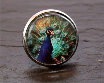 Peacock cabochon ring