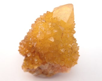Golden Cactus Quartz crystal from South Africa - 31gm / 45mm x 23mm x 32mm (F58645)