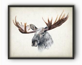 Moose Watercolor Print - Moose Poster - Moose Decor - Watercolour Moose Picture - Elk Print - Hunting Wall Art - Hunting Decor - AB564