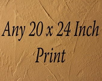 Any Photo In My Shop in A 20x24 Inch Size