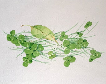 Original Watercolor Painting of Clover and Grass