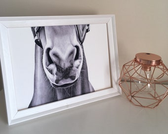 Horse Print, muzzle, wall art, home decor, A4