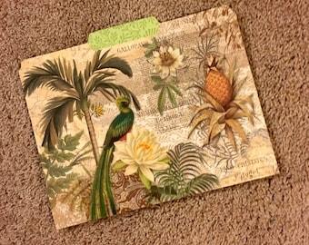Exotic Bird Collage File Folder, Decorative File Folder, Cute File Folder, Desk Accessory, File Organizer  PSS 3543