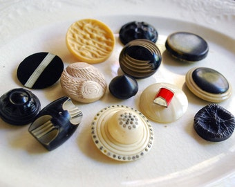 Celluloid Button Lot, Cream Black Buttons, Molded Plastic Shank, Sewing Supplies, Art Deco Buttons, Notions, Craft Supplies, Rhinestones