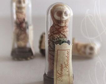 "Delicate curiosity « Momie Antidote » (""Mummy Antidote"")"