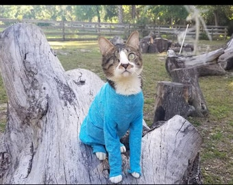 Custom Medical Cat Clothes, Sphynx Cat Sweater, for Allergies, Hyperesthesia, Alopecia, over grooming & more. The Feline Foursie ™  4Down 4Z