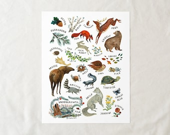 ABC Alphabet Wilderness - 11x14 Art Print