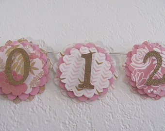 Blush, Gold, Pink, first year banner, 12 month banner, photo banner,