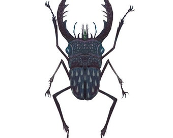 Stag beetle - A4 giclee print