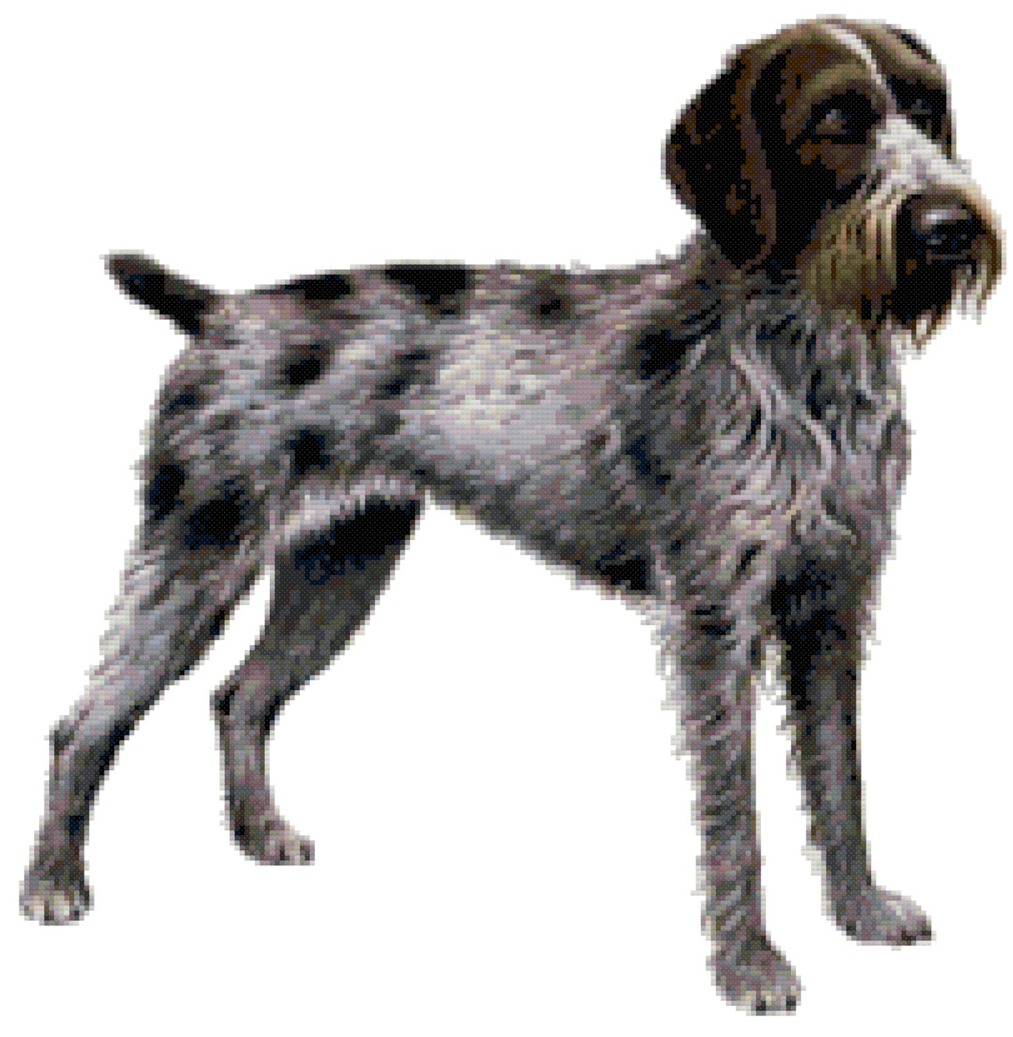 German Wirehaired Pointer Dog Counted Cross Stitch Pattern from ...