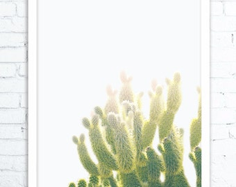 Desert Cactus Print, Cactus Art, Cactus Print, Cactus Wall Art, Large Poster, Cactus Photography