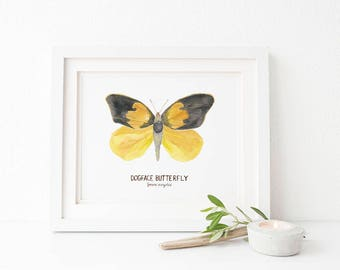 Butterfly Art Print / Watercolor / Natural History Decor / California State Symbols / California Art / Gifts for Her / Dogface Butterfly