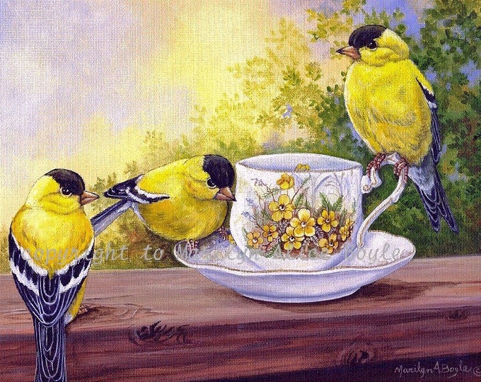 PRINT of THREE GOLDFINCHES-teacup, birds, wings, feathers, wildlife, nature, 7 x 10 inches, garden, wall art, 3rd in a series of four