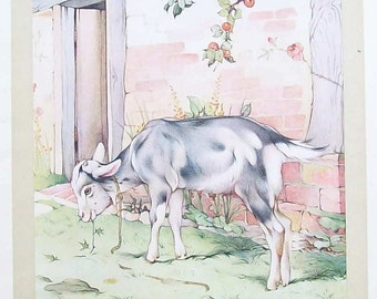 Goat Illustration by ED