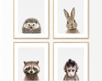 Baby Animal Prints, Nursery Animals, Nursery Animal Print, Baby Animal Wall Art, Printable Nursery, Set of 4 Print, Set of Four Print