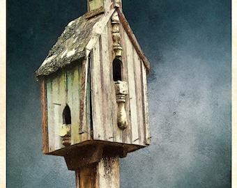 Junkyard Birdhouse