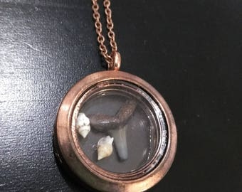 Copper glass locket with real sharks tooth and shells on a copper chain