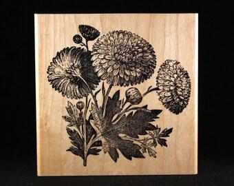 "Chrysanthemum (4"" x 4"")"