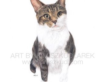 Custom Cat Pet Portrait Colored Pencil Drawing (Small) — 2018 Commission Slot
