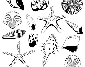 Shells Clipart Clip Art, Ocean Beach Summer Clipart Clip Art - Commercial and Personal Use