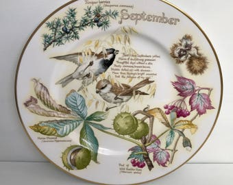 The September Plate by Caverswall China Based on Edith Holden Book Designed by John Ball.