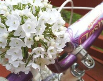 Jasmine ball - White - Clip on polymer Flower for Bikes