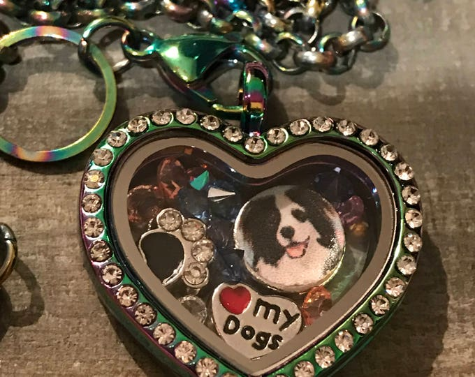 Rainbow Bridge Memorial heart crystal floating locket ~ cat loss ~ dog~you pick charms