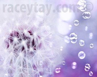 Purple Dandelion Print, White, Lavender, Girl Nursery Decor, Flower Photography, Powder Room Art