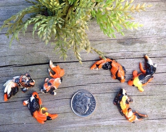 Miniature koi pond etsy for Tiny koi fish