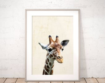 Baby Giraffe Digital Print Nursery Animal Art Jungle Animals Wall Art Printable Neutral Kids Room Decor Baby Shower Gift Instant Download