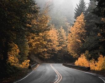 Fall In Washington State, US