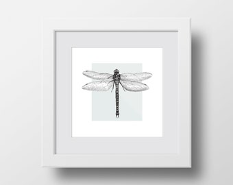 Framed dragonfly print | Dragonfly wall art | Dragonfly art