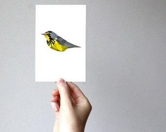 B79 - Canada Warbler - Geometric bird art print