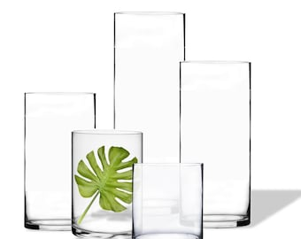 Glass Handblown Cylinder Vases 10 inches in Diameter, Five Different Heights by CYS EXCEL Collection