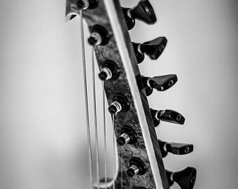 Guitar, Skervesen, Black and White