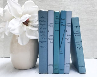 Blue Old Books for Shelf Decor, Vintage Books