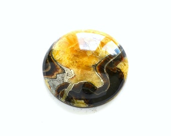Simbircite ammonite with pyrite natural stone cabochon   37 х 37 х 9  mm