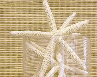 """Starfish - 6""""-7"""" Set of 15 - bulk star fish wedding coastal beach decor"""