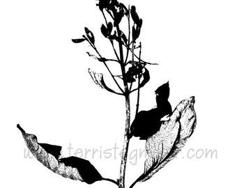 Thermofax Screen - Lilac