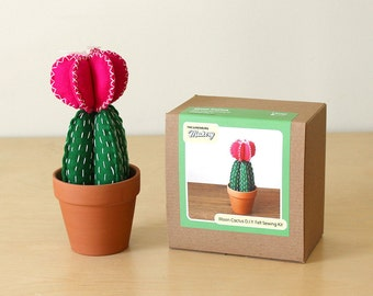 Felt Stuffed Moon Cactus Sewing Kit