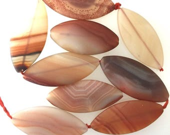 Brazilian Carnelian Seaf Shaped Beads