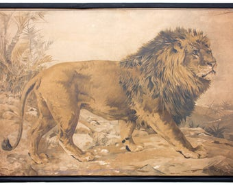 Rare educational chart, lion, Lithograph, Karl Jansky, Böhmen, 1897