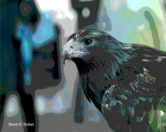 Hawk Art, Southwestern Woodland, Bird of Prey, Blue Green, Abstract Realism, Totem Animal, Home Decor, Wall Hanging, Giclee Print, 8 x 10