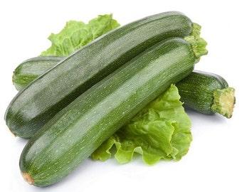 Aprox. 14 seeds Zucchini NEFERTITI ST  2 g fresh seeds best before 2019