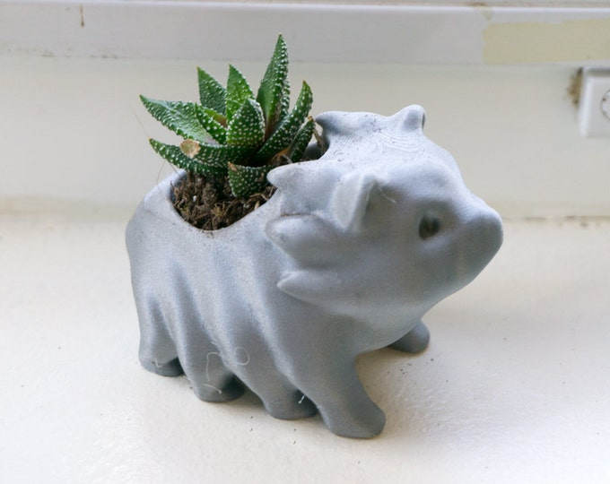 Waterbear Succulent Planter