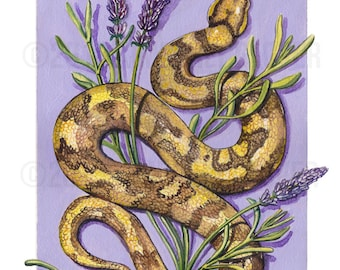 ORIGINAL Watercolor | Snake and Lavender | Scientific Illustration