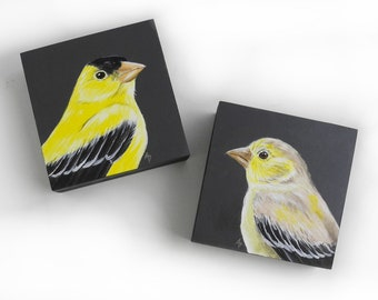 Goldfinch pair of birds - gold finch couple - yellow songbird art - yellow and gray - woodland bird paintings - love bird - husband and wife
