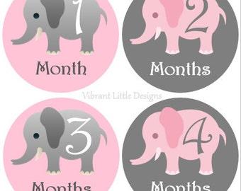 Baby Monthly Stickers Girl, Milestone Stickers, Month Stickers, Baby Month Stickers, Baby Stickers, Pink Elephant  #15