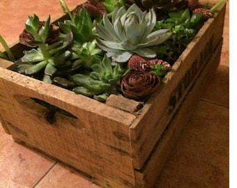 Caja de madera de crasas